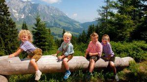 Где ребенку лучше провести летние каникулы за рубежом: Австрия или Германия?