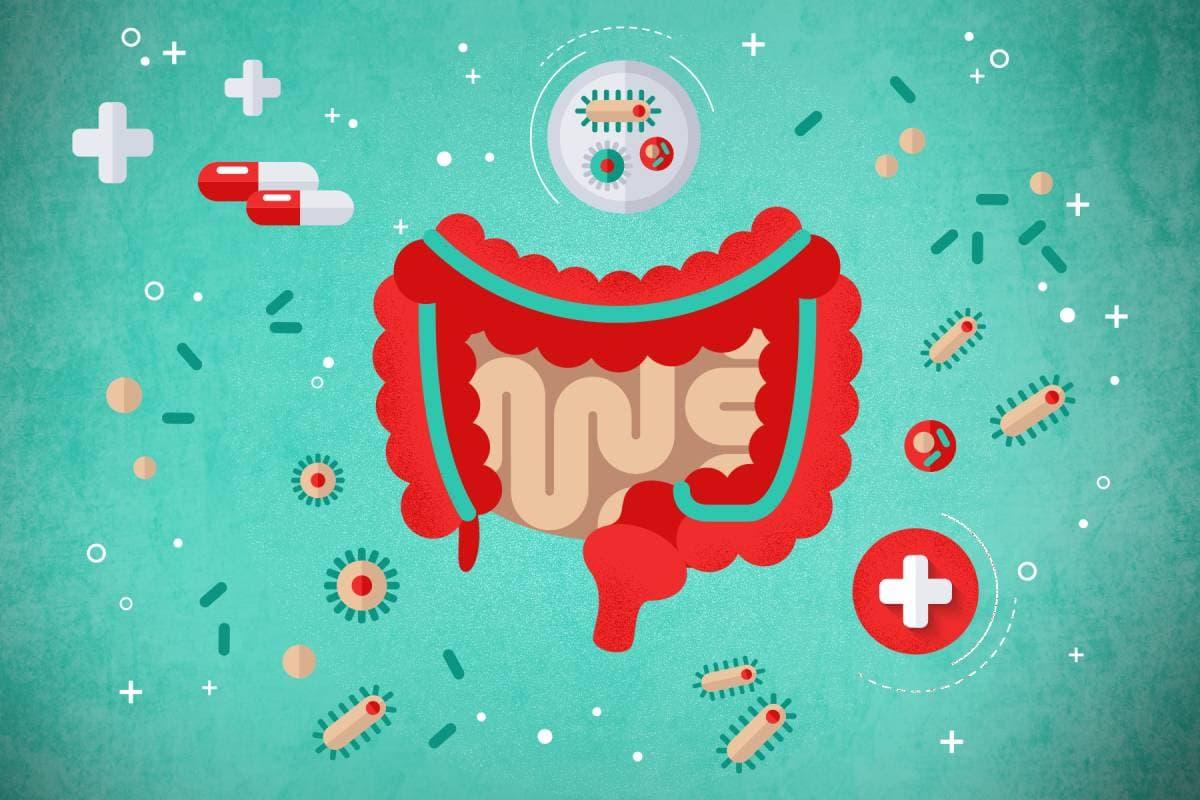 Пробиотики нового поколения ВИВОКАПС — восстановление здоровья без лекарств