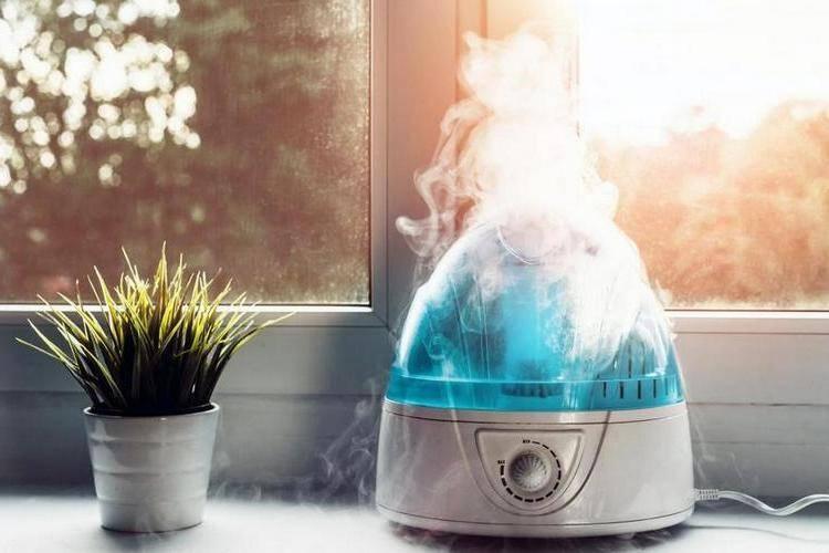 Увлажнитель воздуха, что это такое? Как увлажнить сухой воздух в квартире
