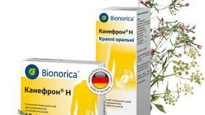 Канефрон® Н при заболеваниях мочевыделительной системы