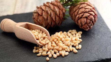 Кедровые орехи – источник здоровья из сердца Сибири